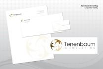 Tenenbaum Consulting – Corporate Id